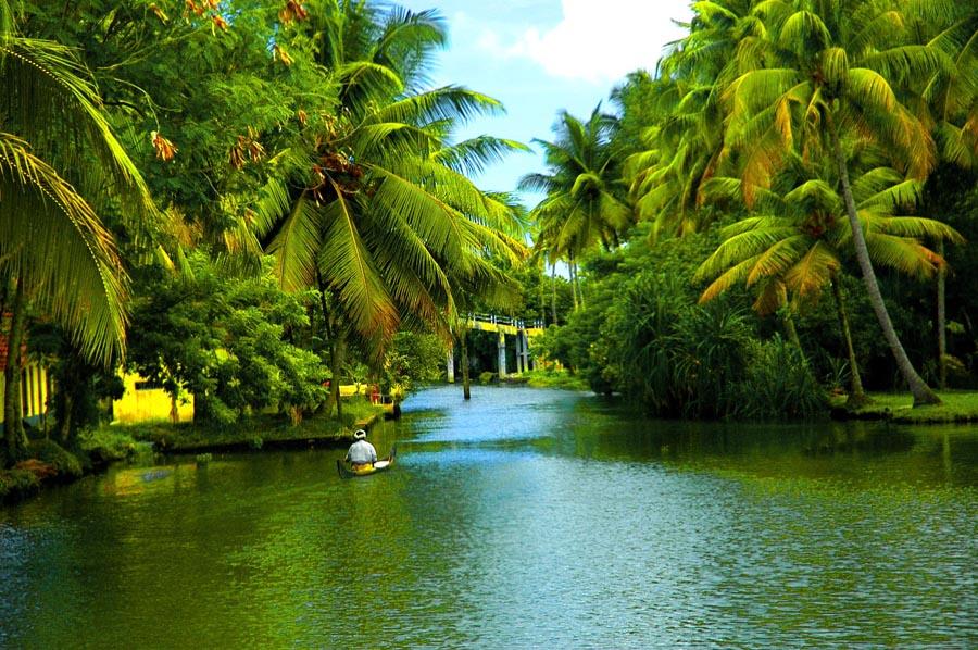 Alappuzha Beautiful Landscapes of Alappuzha