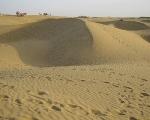 Sand Dunes in Bikaner