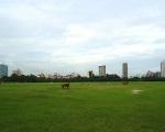 The Kolkata Skyline