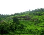 Gandhar Pale Cave