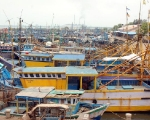 Tuticorin Boats