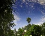 Yercaud Sky