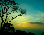Yercaud Sunset