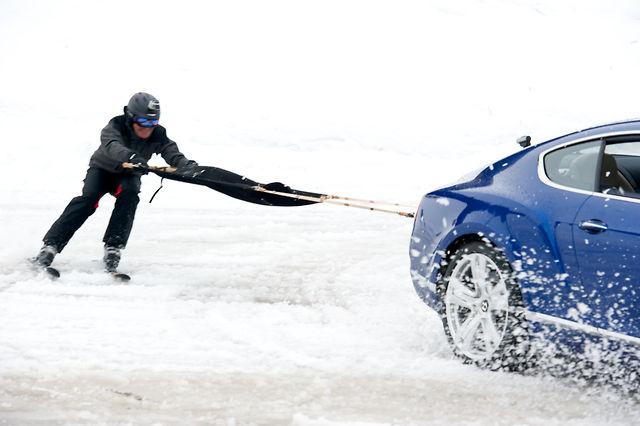 Skijoring with Bentley