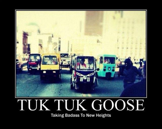 Tuk Tuk Goose Chase