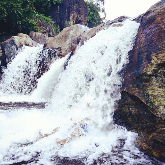 Beautiful Manimuthar falls, one of several amazing stops of the Rickshaw Challenge.
