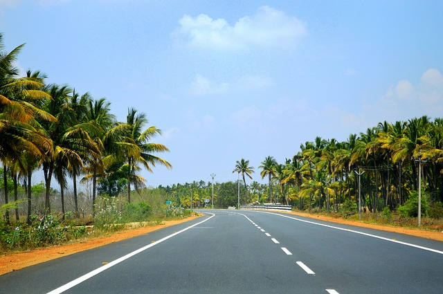 Why We Love Tamil Nadu